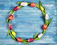 Kreisrahmen von bunten Frühlingstulpen Stockfotos