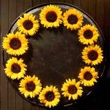 Kreisrahmen von bunten Sonnenblumen Stockbild