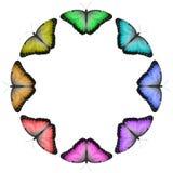 Kreisregenbogen farbige Schmetterlings-Grenze Lizenzfreie Stockbilder