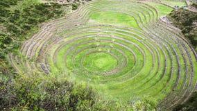 Kreisterrassen des alten Inkas an der landwirtschaftlichen Experimentstation des Moray, Peru Lizenzfreie Stockbilder