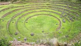 Kreisterrassen des alten Inkas an der landwirtschaftlichen Experimentstation des Moray, Peru Stockfotos