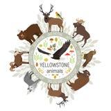 Kreisvektorschablone von Yellowstone Nationalpark Lizenzfreie Stockfotografie
