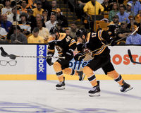 Krejci y Lucic, Boston Bruins Foto de archivo