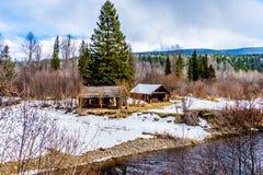 Kreken in de Putten Gray Provincial Park van de de wintertijd in Brits Colombia, Canada stock afbeeldingen