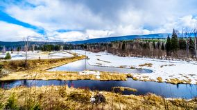 Kreken en moerasland in de wintertijd in Brits Colombia, Canada royalty-vrije stock afbeeldingen