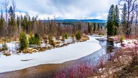Kreken en moerasland in de wintertijd in Brits Colombia, Canada royalty-vrije stock foto