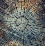 Krekingowa drewniana tekstura Zdjęcie Royalty Free