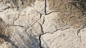 Krekingowa ziemia, Globalny worming skutek zbiory wideo