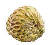 krem jabłkowego Fotografia Stock