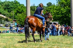 Kremenchug, Ukraine - June 3, 2017: Pony riding on peasant fair royalty free stock photo
