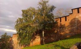 Kremlin ściana Obraz Stock