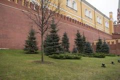 Kremlin jest warownym kompleksem w centre Moskwa Obraz Stock