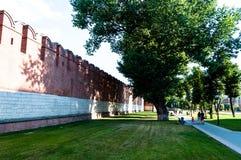 Kremlin vägg Kraftigt härligt gammalt klokt träd arkivbilder