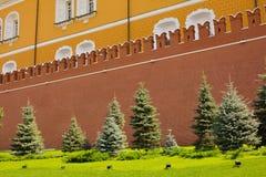 Kremlin wall Royalty Free Stock Photography