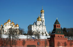 The Kremlin wall-Russia Royalty Free Stock Photography