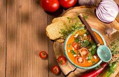 Kremowa puree polewka od piec pomidorów, oberżyny, pieprz, czerwony oni Obrazy Royalty Free