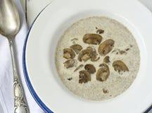 kremowa zupa pieczarkowa Zdjęcia Stock
