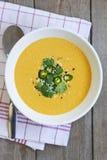 kremowy zupny warzywo Obrazy Stock