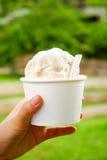 kremy szyszek tła czekoladowe lody lodu nad pistacjowym waniliowym truskawkowy white Wanilia i nabiału lody w ręce filiżanka z lo Zdjęcia Royalty Free