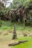 Kreolsk kyrkogård Arkivbilder