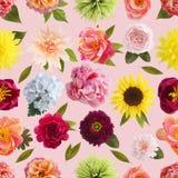 Krepdeszynowi papierowego kwiatu bezszwowi deseniowi pastelowi kolory Zdjęcie Royalty Free