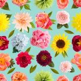 Krepdeszynowi papierowego kwiatu bezszwowi deseniowi pastelowi kolory Zdjęcie Stock
