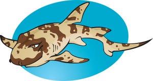 kreskówka bambusowy rekin Obrazy Stock