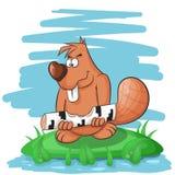 Kreskówka bobra śmieszny objadanie na drzewie Obraz Royalty Free