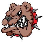Kreskówka buldoga twarz Zdjęcia Royalty Free