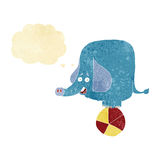 kreskówka cyrkowy słoń z myśl bąblem Obraz Royalty Free
