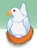 Kreskówka gołąb z jajkiem w gniazdeczku - Wektorowa ilustracja Ilustracja Wektor