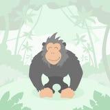 Kreskówka goryla zieleni dżungli las Kolorowy Zdjęcie Stock