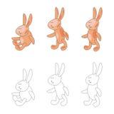 Kreskówka królik w trzy pozach Obrazy Stock
