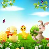 Kreskówka królik z dziecka kaczątkiem w polu i kurczakiem Obraz Royalty Free