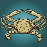 Kreskówka kraba wektoru stylowa ilustracja Pociągany ręcznie oceanu mieszkaniec Obraz Royalty Free