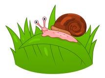 Kreskówka ślimaczek na trawie royalty ilustracja