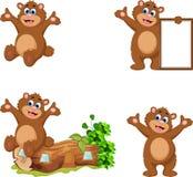Kreskówka niedźwiedź dla ciebie projektuje Zdjęcie Royalty Free