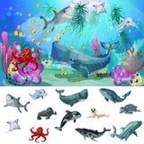 Kreskówka oceanu I morza faun pojęcie Zdjęcia Stock