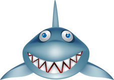 kreskówka rekin Zdjęcie Royalty Free