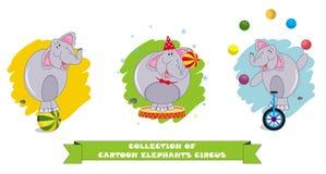 Kreskówka słonie w różnych pozach na białym tle ilustracja wektor