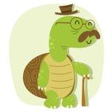 Kreskówka stary żółw Fotografia Stock