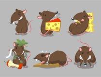 Kreskówka szczura ilustracje Obraz Stock