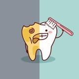 Kreskówka zdrowy i gnijący ząb ilustracja wektor
