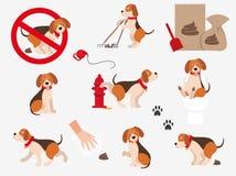 Kreskówki, śmieszni zwierzęta domowe Set informacja psa ikony pojedynczy białe tło obrazy royalty free