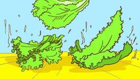 Kreskówki świeża sałatkowa sałata spada na stole z wodne krople Zdjęcie Royalty Free