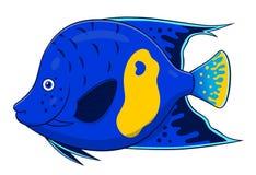 Kreskówki angelfish Zdjęcie Stock