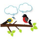 Kreskówki aplikaci ptaki royalty ilustracja