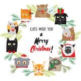 Kreskówki Bożenarodzeniowy tło z ślicznymi kotów charakterami Nowy Rok pocztówkowego projekta Chistmas figlarki wakacje szablon w royalty ilustracja