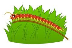 Kreskówki centipede ilustracji