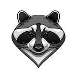 Kreskówki dzika szopowa zwierzęca maskotka royalty ilustracja
